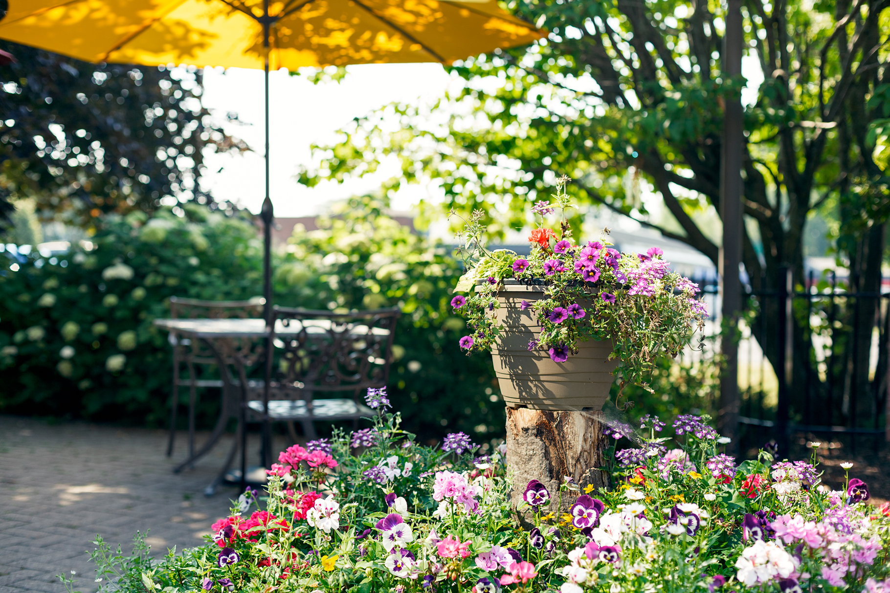 Beautiful garden of Bearbrook Retirement Residence in Ottawa